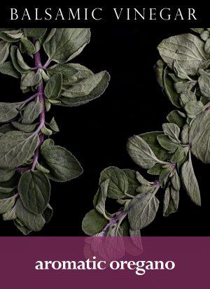 Aromatic Oregano